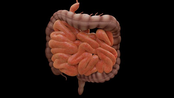 All You Need To Know About Colonoscopy